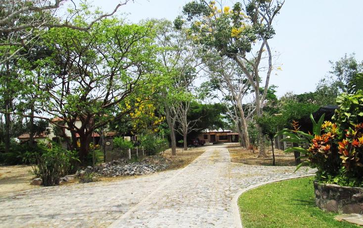 Foto de terreno comercial en venta en  , el aguacate, cihuatlán, jalisco, 2029880 No. 04