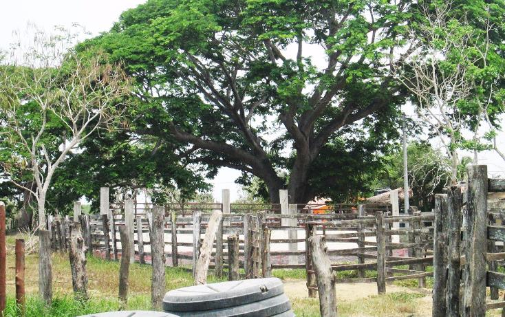 Foto de terreno comercial en venta en  , el aguacate, cihuatlán, jalisco, 2029880 No. 07