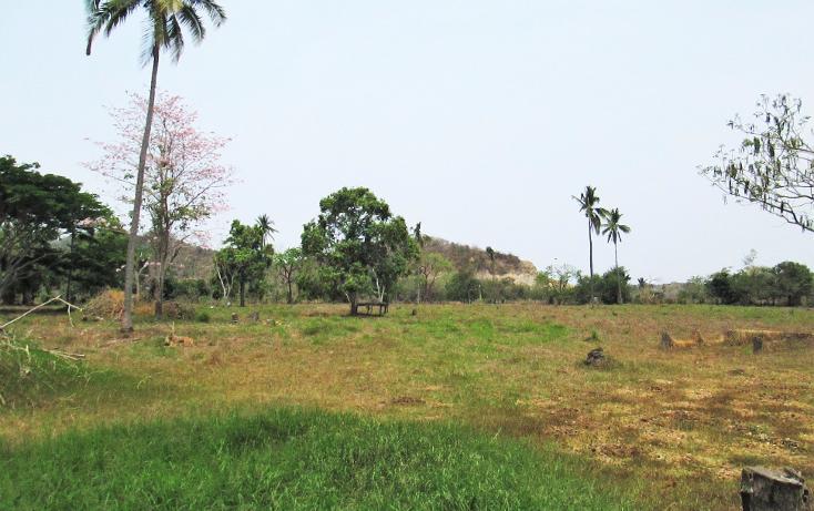 Foto de terreno comercial en venta en  , el aguacate, cihuatlán, jalisco, 2029880 No. 09