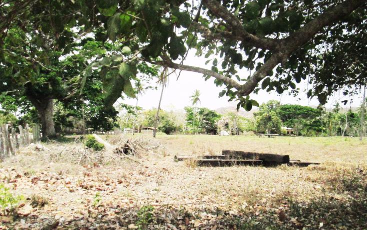 Foto de terreno comercial en venta en  , el aguacate, cihuatlán, jalisco, 2029880 No. 18