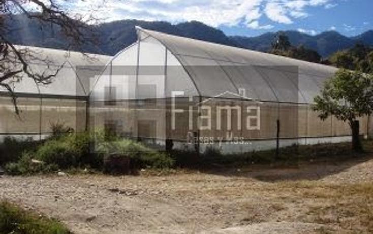 Foto de terreno habitacional en venta en  , el aguacate, tepic, nayarit, 1228795 No. 05