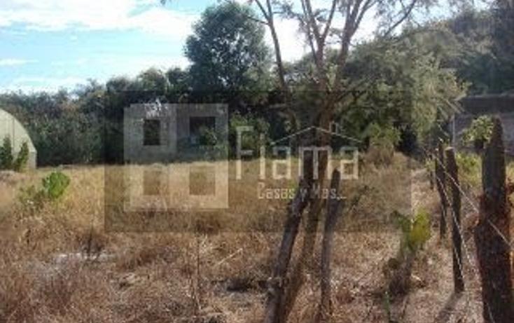 Foto de terreno habitacional en venta en  , el aguacate, tepic, nayarit, 1228795 No. 07