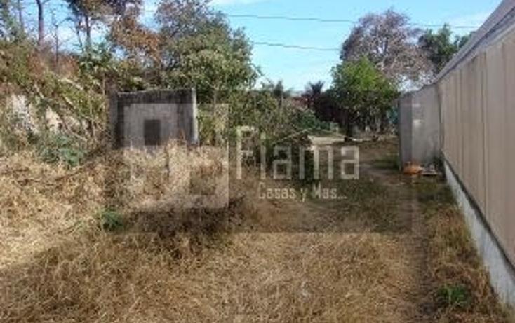 Foto de terreno habitacional en venta en  , el aguacate, tepic, nayarit, 1228795 No. 10