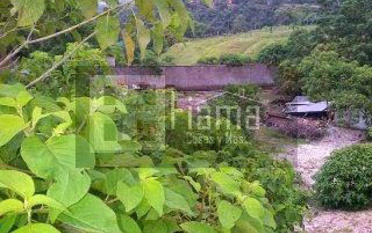 Foto de terreno habitacional en venta en, el aguacate, tepic, nayarit, 1245441 no 10