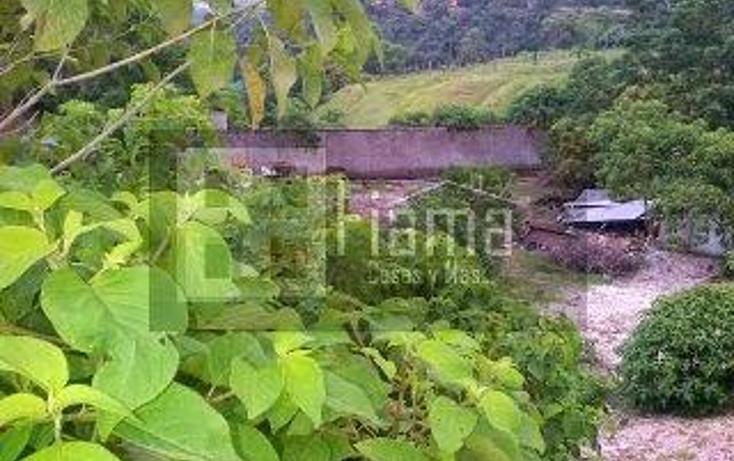 Foto de terreno habitacional en venta en  , el aguacate, tepic, nayarit, 1245441 No. 10