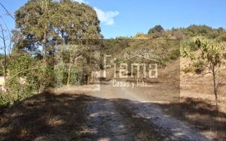 Foto de terreno habitacional en venta en  , el aguacate, tepic, nayarit, 1284833 No. 13