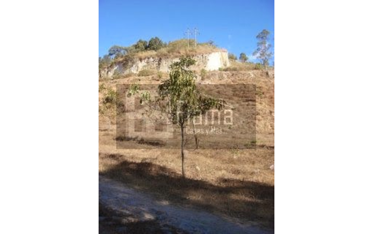 Foto de terreno habitacional en venta en  , el aguacate, tepic, nayarit, 1284833 No. 14