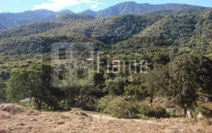 Foto de terreno habitacional en venta en  , el aguacate, tepic, nayarit, 1284833 No. 18