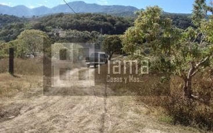 Foto de terreno habitacional en venta en  , el aguacate, tepic, nayarit, 1360541 No. 03