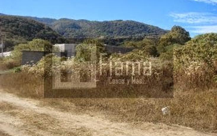 Foto de terreno habitacional en venta en  , el aguacate, tepic, nayarit, 1360541 No. 05