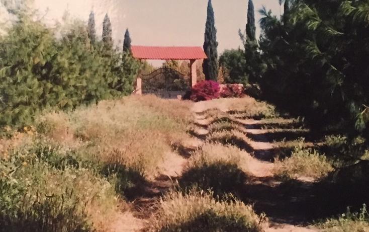 Foto de terreno habitacional en venta en  , el arenal centro, el arenal, hidalgo, 1969737 No. 02