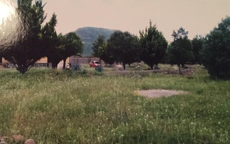 Foto de terreno habitacional en venta en  , el arenal centro, el arenal, hidalgo, 1969737 No. 03