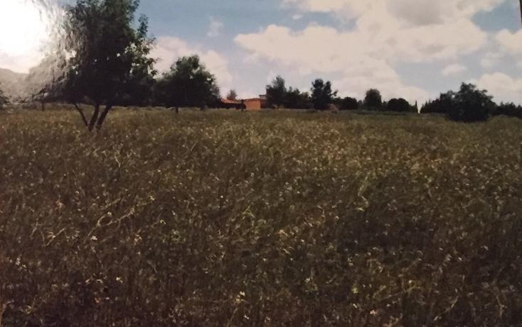 Foto de terreno habitacional en venta en  , el arenal centro, el arenal, hidalgo, 1969737 No. 05