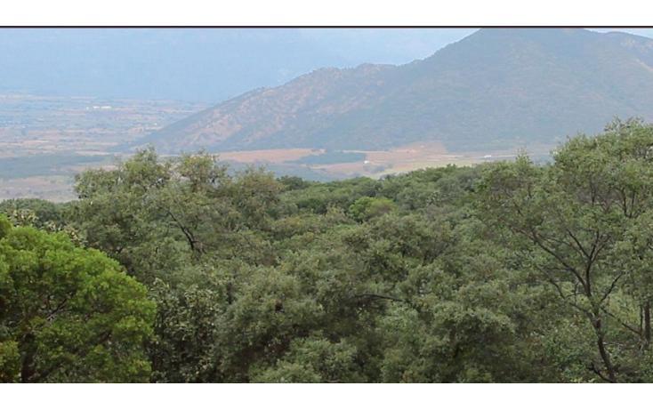 Foto de terreno habitacional en venta en  , el arenal, el arenal, jalisco, 1639624 No. 01