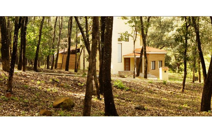 Foto de terreno habitacional en venta en  , el arenal, el arenal, jalisco, 1639624 No. 03