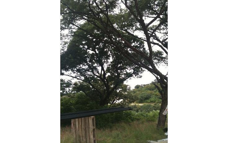 Foto de terreno habitacional en venta en  , el arenal, el arenal, jalisco, 1719726 No. 06