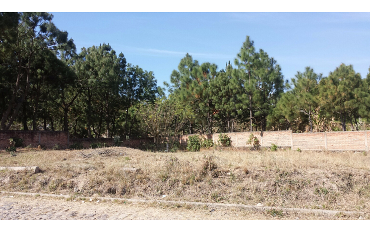 Foto de terreno habitacional en venta en  , el arenal, el arenal, jalisco, 1756646 No. 05