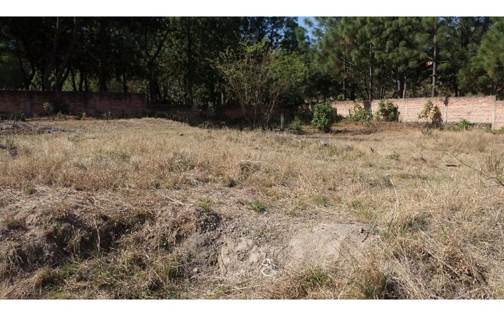 Foto de terreno habitacional en venta en  , el arenal, el arenal, jalisco, 1861020 No. 02