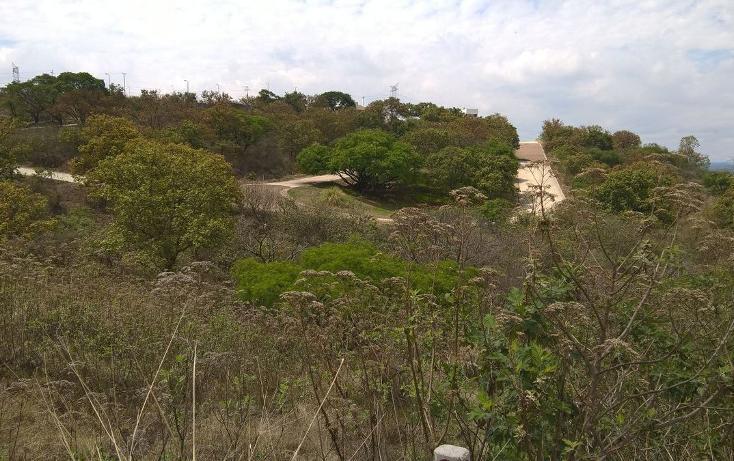 Foto de terreno habitacional en venta en coto el roble , el arenal, el arenal, jalisco, 2001815 No. 07