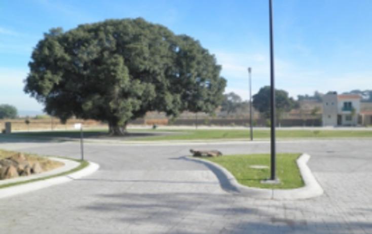 Foto de terreno comercial en venta en  , el arenal, el arenal, jalisco, 2015984 No. 06