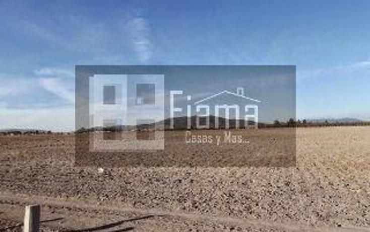 Foto de terreno habitacional en venta en  , el armadillo, tepic, nayarit, 1864382 No. 05