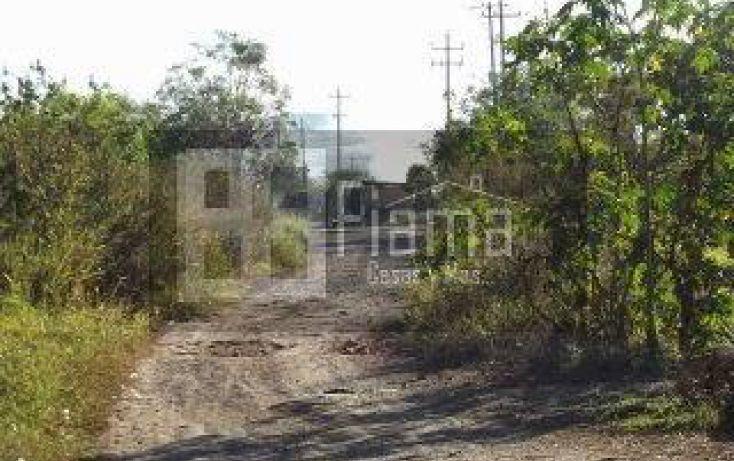 Foto de terreno habitacional en venta en, el armadillo, tepic, nayarit, 1864382 no 12