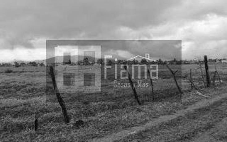 Foto de terreno habitacional en venta en  , el armadillo, tepic, nayarit, 1869170 No. 06