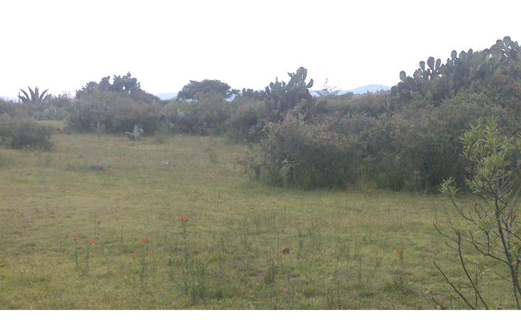 Foto de terreno habitacional en venta en  , el atoron, soyaniquilpan de ju?rez, m?xico, 1272827 No. 04