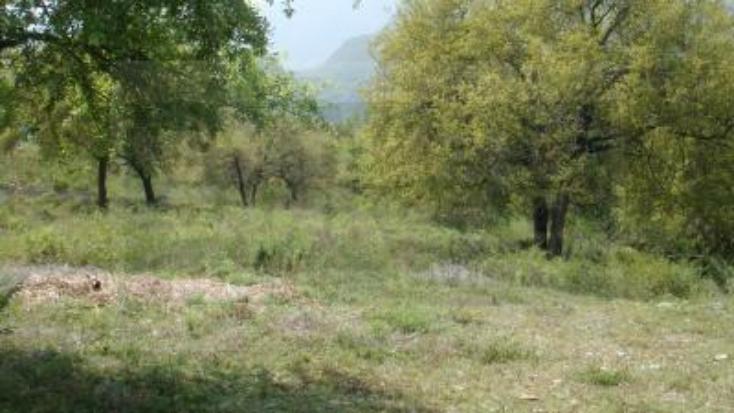 Foto de terreno habitacional en venta en  , el barrial, santiago, nuevo león, 222795 No. 02
