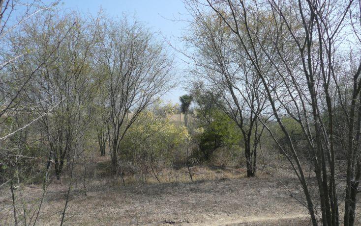Foto de terreno habitacional en venta en, el barrial, santiago, nuevo león, 1078787 no 04