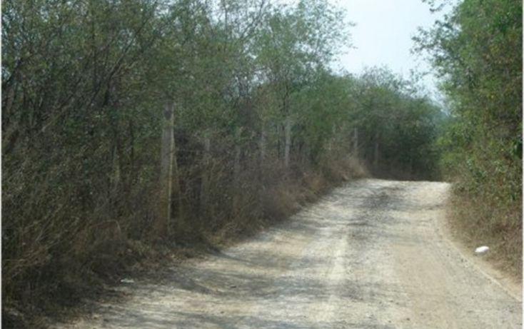 Foto de terreno habitacional en venta en, el barrial, santiago, nuevo león, 1122215 no 02