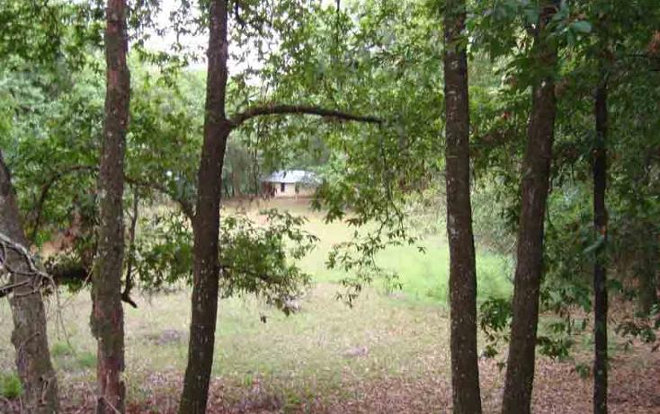Foto de terreno habitacional en venta en  , el barrial, santiago, nuevo león, 939459 No. 02