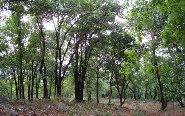 Foto de terreno habitacional en venta en  , el barrial, santiago, nuevo león, 939459 No. 03