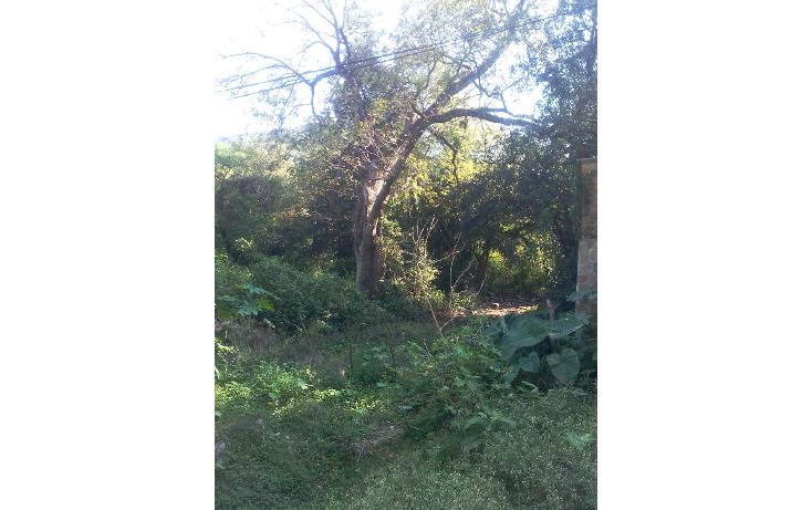 Foto de terreno comercial en venta en  , el barro, monterrey, nuevo león, 1417793 No. 09