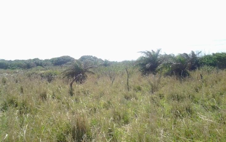 Foto de terreno habitacional en venta en  , el bayo, alvarado, veracruz de ignacio de la llave, 1170595 No. 04