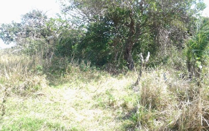 Foto de terreno habitacional en venta en  , el bayo, alvarado, veracruz de ignacio de la llave, 1170595 No. 06
