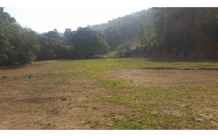 Foto de terreno habitacional en venta en  , el bellotal, ocoyoacac, méxico, 1042129 No. 08