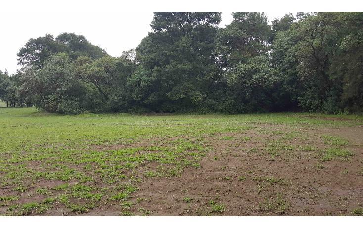 Foto de terreno habitacional en venta en  , el bellotal, ocoyoacac, méxico, 1042129 No. 10