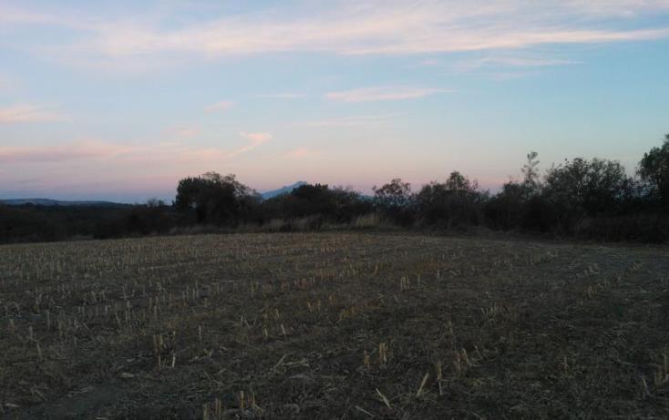 Foto de terreno habitacional en venta en  , el calvario, ixtacuixtla de mariano matamoros, tlaxcala, 397067 No. 06