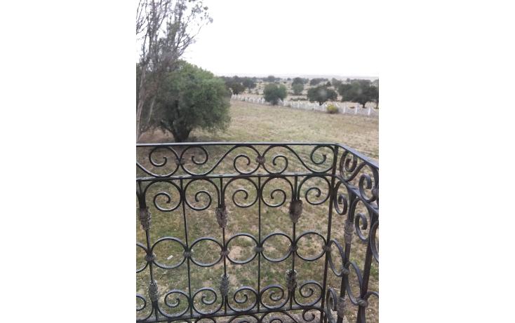Foto de rancho en venta en  , el calvario, perote, veracruz de ignacio de la llave, 1665717 No. 35