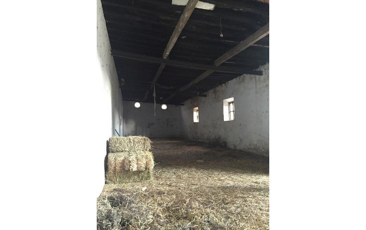 Foto de rancho en venta en  , el calvario, perote, veracruz de ignacio de la llave, 1665717 No. 38