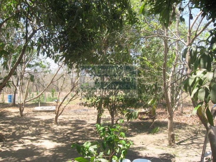 Foto de casa en venta en  , el cantón, puerto vallarta, jalisco, 740829 No. 07