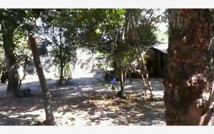 Foto de terreno habitacional en venta en, el caracol campo chiquito, yautepec, morelos, 1684158 no 09