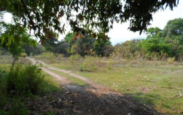 Foto de terreno habitacional en venta en, el caracol campo chiquito, yautepec, morelos, 1751208 no 04