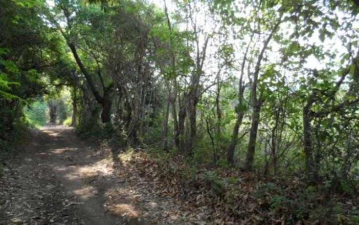 Foto de terreno habitacional en venta en, el caracol campo chiquito, yautepec, morelos, 1751208 no 05