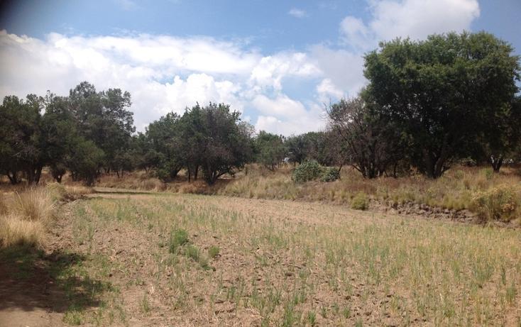 Foto de rancho en venta en  , el carmen xalpatlahuaya, huamantla, tlaxcala, 1965261 No. 04