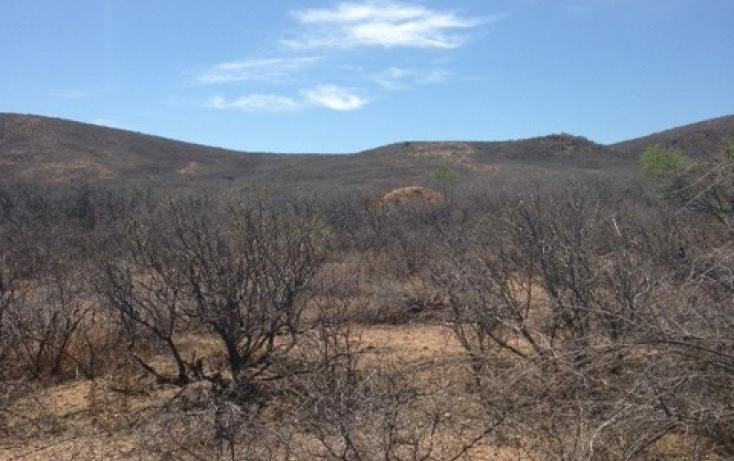 Foto de terreno habitacional en venta en, el carrizalillo, riva palacio, chihuahua, 895123 no 04