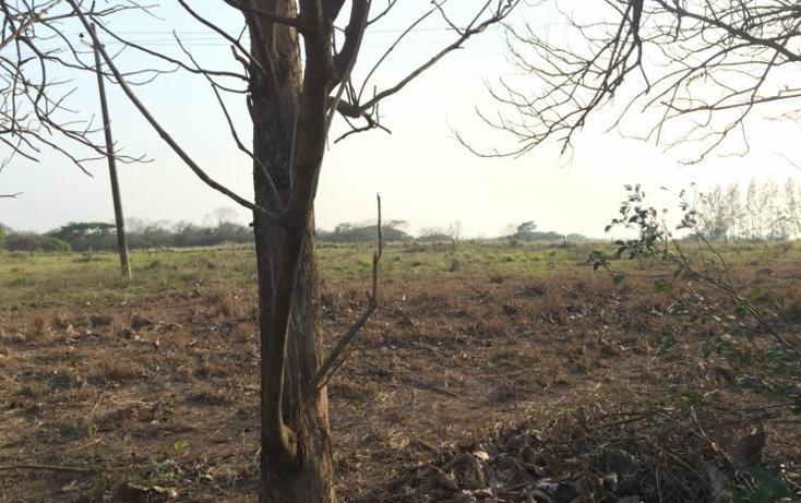 Foto de terreno comercial en venta en  , el cedral, medellín, veracruz de ignacio de la llave, 1781440 No. 02