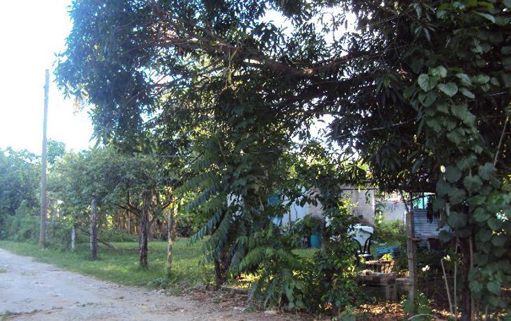 Foto de terreno habitacional en venta en  , el cedro, centro, tabasco, 1436395 No. 02