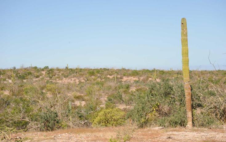 Foto de terreno habitacional en venta en  , el centenario, la paz, baja california sur, 1137959 No. 05